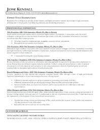 Amazing Resume Headline Examples For Software Engineer Ideas
