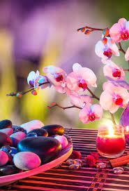 Zen iPhone Wallpaper on WallpaperSafari