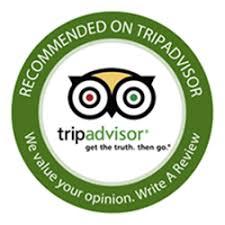 Tripadvisor-logo - Pottery / Ceramics