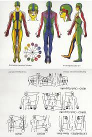 Bodymapping Acupuncture Chart
