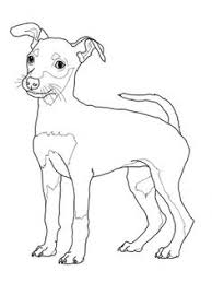 Small Picture Rottweiler Puppy coloring page from Dogs category Select from