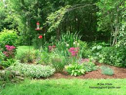 flower garden plans. Our Hummingbird Garden Plan Perennial Flower Plans