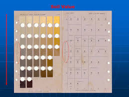 Soil Color Ges 394 Revised By Mr Brian Oram Ppt Download