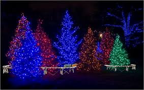 Decorating Outside Tree With Lights Christmas Lights Outdoor Trees Lighting And Ceiling Fans