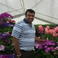 Sunil Sathyanarayana - Credit Team Leader - Toll Group | LinkedIn