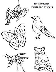 I am thankful for birds and insects coloring page. | LDS Primary ...