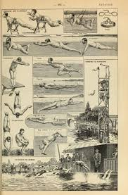 Best 799 swim images on Pinterest Other Water polo Swim and.