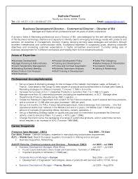 2015 business sales resume examples - French Resume Examples