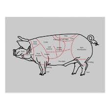 Pork Meat Cuts Chart Pork Meat Cuts Diagram Chart Postcard