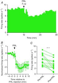 Prolactin Regulation Of Oxytocin Neurone Activity In