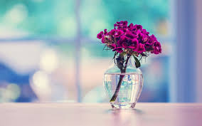 beautiful background images for desktop. Plain Desktop 1920x1200 Table Flowers Background Intended Beautiful Images For Desktop H