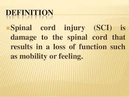 Sci Ppt Spinal Injury Ppt