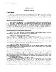 resume s consultant resume s consultant resume pictures full size