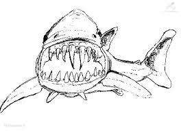 Shark Coloring Pages The Sun Flower Pages