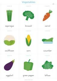 vegetables names list. Exellent List Vegetables Vocabulary Cards On Names List E