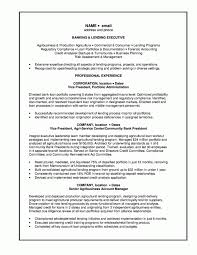 ... Personal Banker Resume Examples And Lending Executive ...