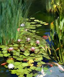 anese garden painting water lilies and koi pond by elaine plesser