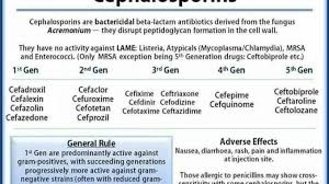 Cephalosporin Structure Classification Clinical Use And