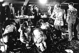 from the archive amazing behind the scenes photographs from stanley kubrick on set cast members during the deleted pie fight scene