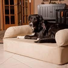 dog couches new snoozer luxury memory foam dog sofa hayneedle