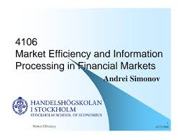 4106 Market Efficiency and Information Processing in Financial Markets