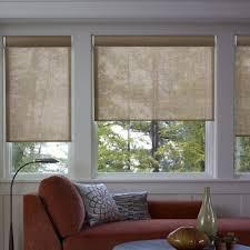 Astounding Basement Window Blinds  Cabinet Hardware Room Homedepot Window Blinds