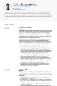 Chief Technology Officer Resume Samples Visualcv Resume Samples