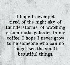 Small Beautiful Quotes Best of See The Small Beautiful Things Quotes Pinterest Beautiful