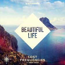 Lost Frequencies Hits 1 In Belgian Charts With His First