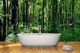407 Best Wall Murals U0026 Window Coverings U0026 Tiles Etc Images On Bathroom Wallpaper Murals