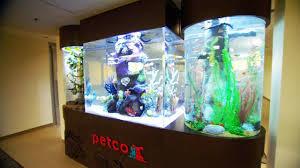 petco fish tanks. Wonderful Tanks Petco Fish Tank With U0026 Snakes For Fish Tanks