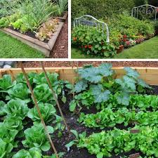 25 vegetable garden ideas for any size