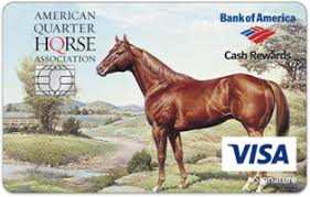 Quarter Cards American Quarter Horse Association Credit Card Credit Cards