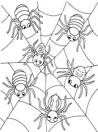 Small Picture Spider Web Drawings Coloring Coloring Pages
