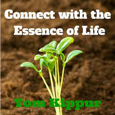 The essence of Life - Home   Facebook