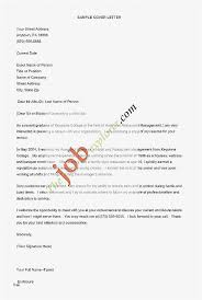 Free Resume Critique Unique Free Resume Critique Free Template Resume Best Resume Templates For