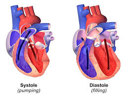 Heart Systolic And Diastolic Chart Difference Between Systolic And Diastolic Definition
