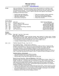 Sales Lead Resume Retail