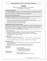 Pet Sitter Resume Download Duties Dwighthowardallstar Com