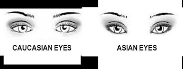 crease and contour eyeshadow asian eyes vs caucasian eyes bun bun makeup tips and beauty reviews