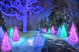 experience the magic of the missouri botanical garden this holiday season