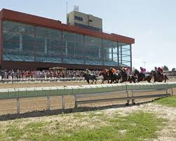 the two breeds that race at arapahoe park thoroughbreds and quarter horses