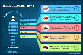 day 1 t colon cleansing