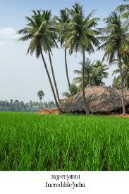 Papikondalu Andhra Pradesh Green Nature Village Life