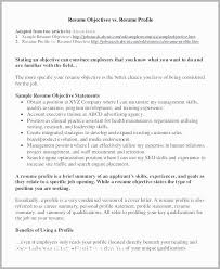 Example Of A Profile For A Resumes Resume Summary Paragraph Examples Example Profile Resume Resume