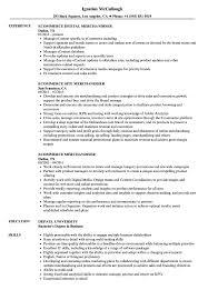 Merchandising Resume Ecommerce Merchandiser Resume Samples Velvet Jobs