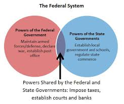 The Federal In Federalism Venn Diagram Answers Evaluate Graphics In Informational Procedural Text Texas Gateway
