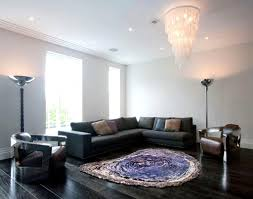 lovely adorable living room rugs tips excellent decoration modern area rugs for living room lovely design