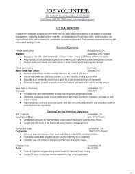 Writing A Technical Resume Fascinating Technical Resume Templates Simple Resume Examples For Jobs