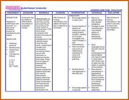 nursing care plan template nursing care plan template apa examples